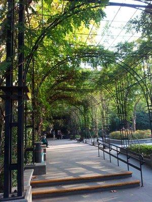 Fuxing Park 3.jpg