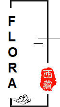 Lhasa 5.png